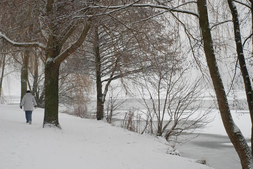 Winter am Alsterufer