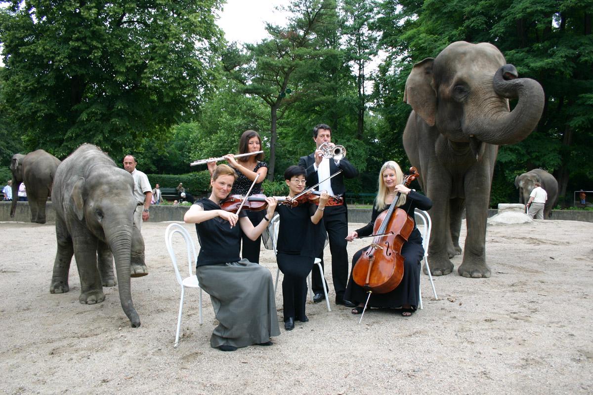 Romantik Nächte im Tierpark Hagenbeck - Foto im Hamburg Web