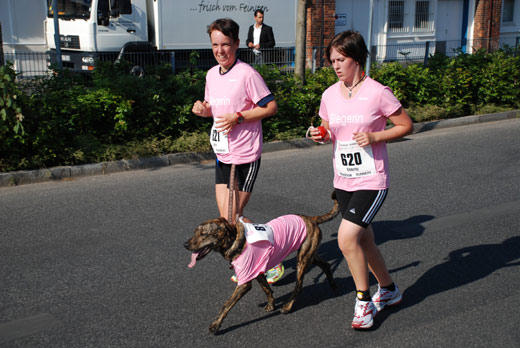 Hund beim Womens Run 2008