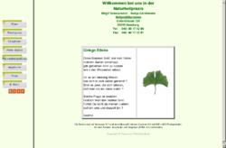 Ginkgo-Biloba-Therapien