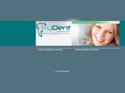 1a-High-Tech aus dem Dentallabor tryDent