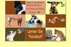 Dogs Academy Hundeschule Wedel