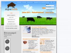 depotbulls Empfehlungsliste und Depotstrukturberatung